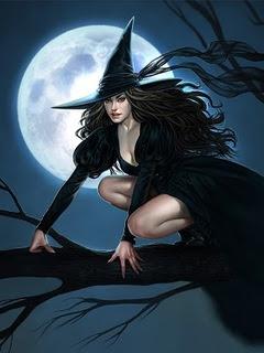 Halloween, pun mjesec i vještica na grani download besplatne pozadine slike za mobitele