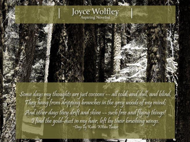 Joyce Wolfley