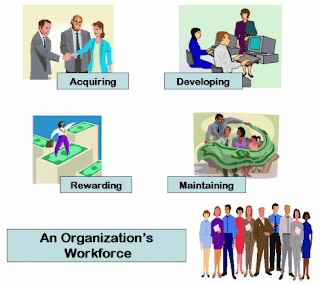 human resource managements function in organisations Chapter 1 introduction to human resource management 1) the basic functions of the management process include all of the following except  in most organizations.