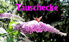 Meine Tausch/Kaufecke
