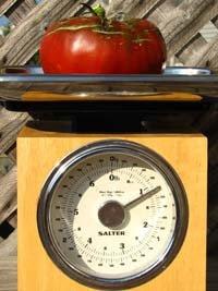 a 1.25 lb tomato on a scale
