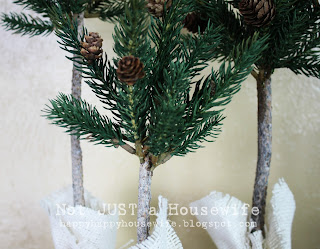 12 Pine Tree Topiary Tutorial