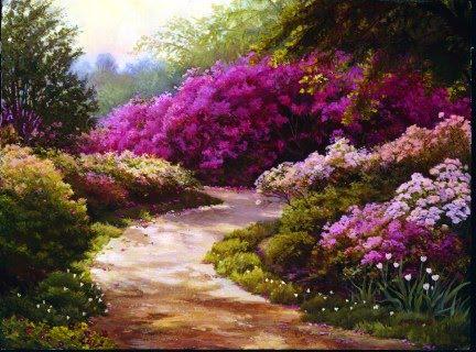 Flores De Todos Os Sabores