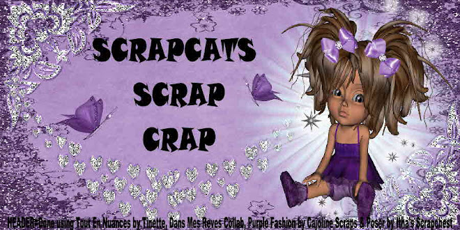 Scrapcat&#39;s Scrap Crap