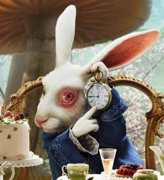 http://2.bp.blogspot.com/_9MNlGOJb83Q/S5UkJyjXM-I/AAAAAAAAATQ/nNM8hvXTRTA/s400/alice-in-wonderland-white-rabbit+edit.jpg
