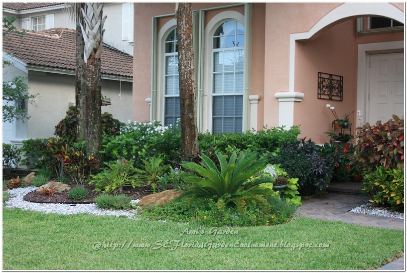 Southeast florida garden evolvement my garden one year for Florida landscape ideas front yard