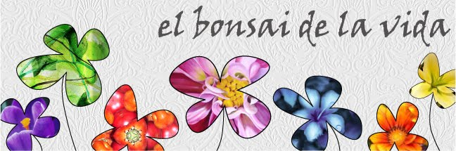El Bonsai de la Vida
