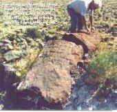 El arca de Sidna Nouh ('Alayhi Salam). 0e8aaa30