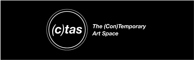 The (Con)Temporary Art Space (in Chicago)