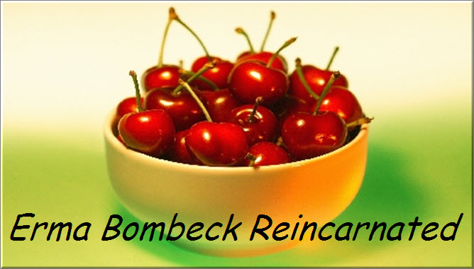 Erma Bombeck Reincarnated