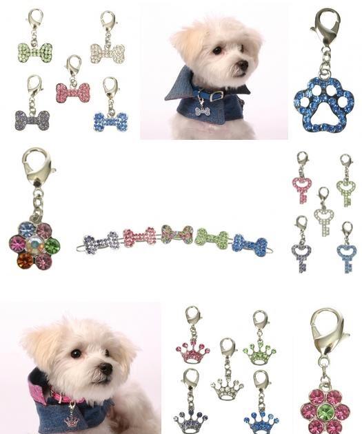 Accesorios para perros regalos para tu mascota en san for Accesorios para mascotas