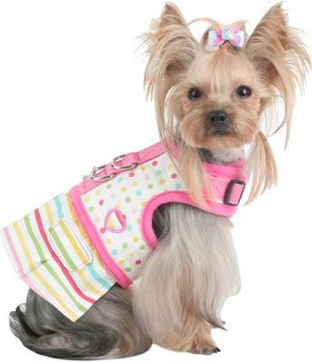 Accesorios para perros nuevos accesorios para perritos for Accesorios para mascotas