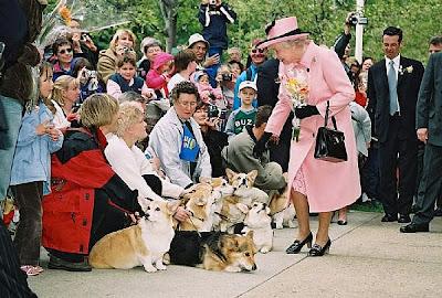 Windsor Dog Show Tickets
