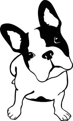 Accesorios para Perros Perros y Gatos en la Pared
