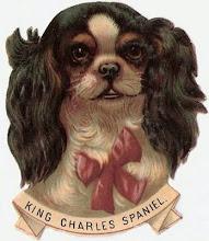 A Victorian Callie