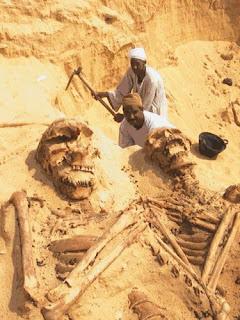 http://2.bp.blogspot.com/_9OTiSB8slh8/SIl6fn2oCkI/AAAAAAAAAAU/1Djy0cU1lQs/s320/giant_bones.jpg