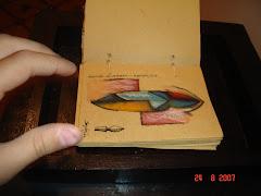 Libro de artista - Serie Guarani Tupi