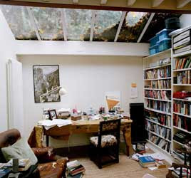 Martin Amis's study