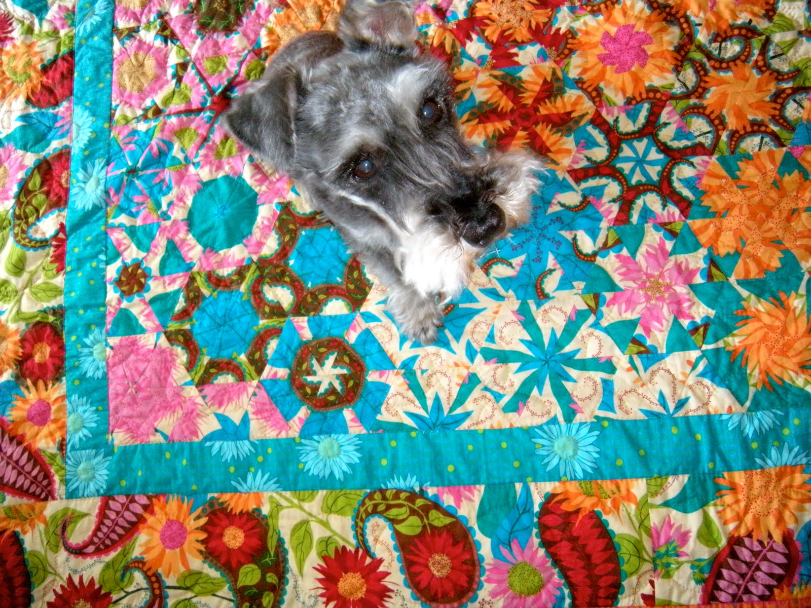 Quilts and Boxes: Floating Flowers : quilts n calicoes - Adamdwight.com