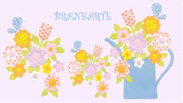 Brankarte
