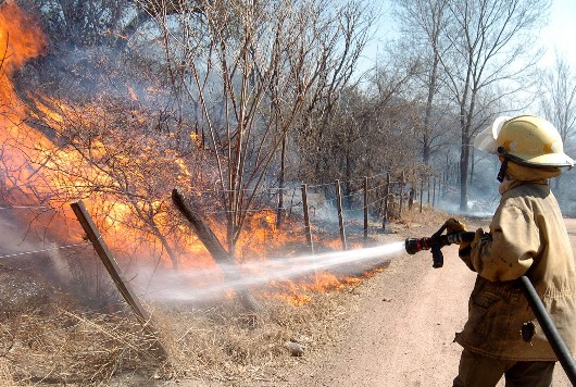 Incendios forestales prevenci n incendios forestales - Matachispas para chimeneas ...