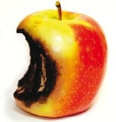 rotten apple photo