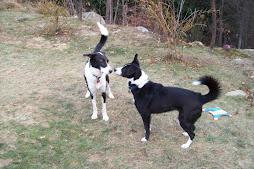 Skye and Nuala