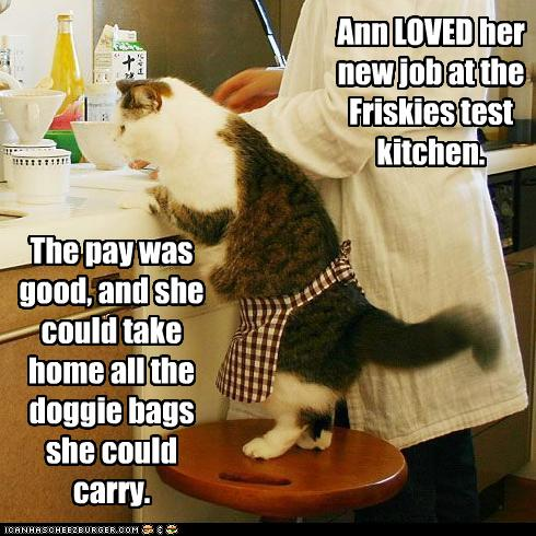 lol cat chef