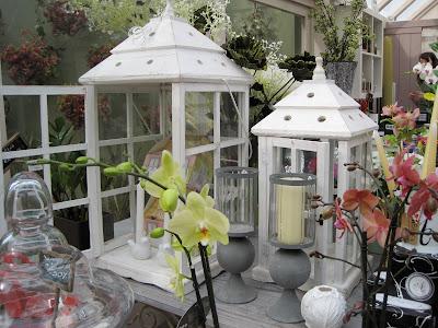 Dream shabby chic lanterne bianche e orchidee for Lanterne da arredo