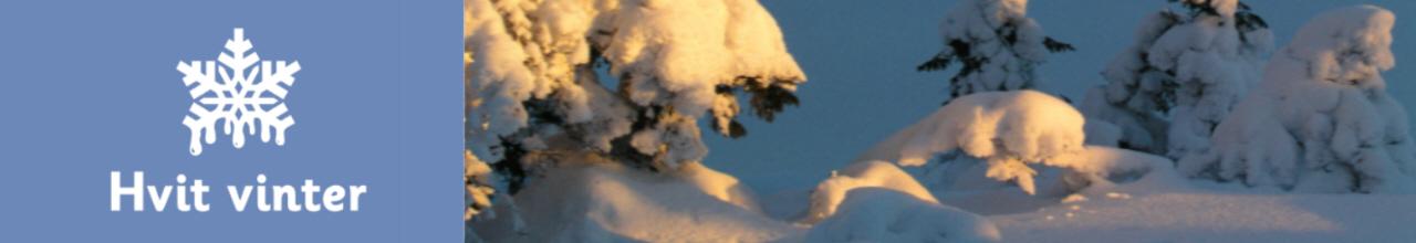 Hvit vinter