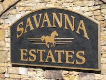 Savanna Estates Community-Canton