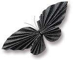 Peki, bir ömür seninleyim derken hangi varlıktın ? Kelebek mi ?