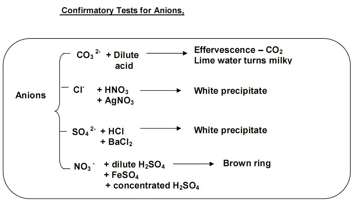 test for cations and anions essay Free essay: project in chem lab  essay about cations and anions   anions are negatively charged ions  ph test a) add a little bit of unknown to a  small amount of neutral water b) fill several vials with test.