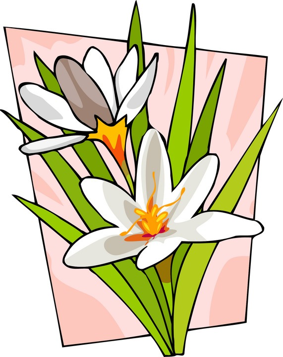 thank you flowers animation. thank you flowers clip art.