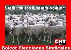 Boicot Elecciones Sindicales
