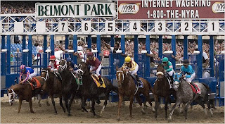 Belmont Stakes Odds at BSNblog