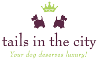 Tails in the City - Your dog deserves a stylish blog!