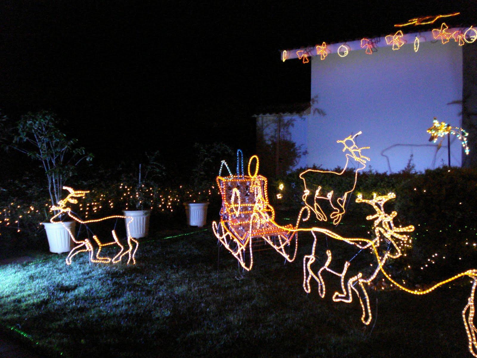 enfeites luminosos de natal para jardim : enfeites luminosos de natal para jardim:Cópia+de+Enfeites+de+natal+2008+096.jpg