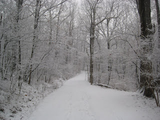 Snow-covered trail in Frick Park