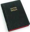 LA BIBLIA OLINE