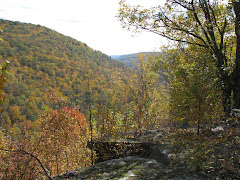 View from Chimney Rocks