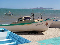 Baja news since 2007 fishing in puerto pe asco for Puerto penasco fishing