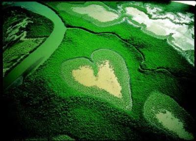 Terre je t'aime dans écologie arthus_bertrand_002_1