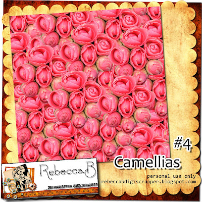 http://rebeccabdigiscrapper.blogspot.com/2009/09/camellia-papers-4-freebie.html