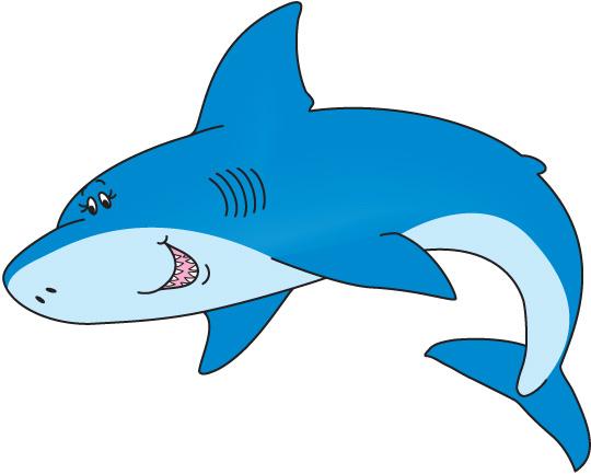 Schalm Shark
