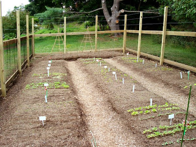 Deer Proof Vegetable Garden Ideas deer proof fence for vegetable garden. latest deer proof fence for