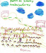 Planta de fresa y trabajadores. Angelina, 12 años