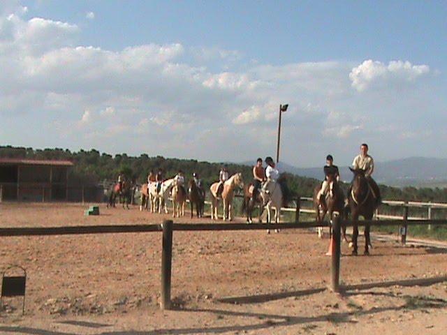 Alicante Escuela de Equitación