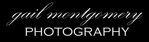 Baltimore Maryland Photographer | Gail Montgomery Photography