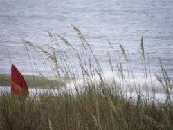South Carolina 2010